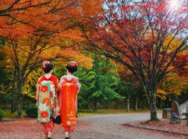 טיול מאורגן ליפן