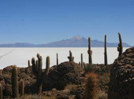 טיול לפרו ובוליביה נוף של הרים מושלגים