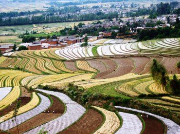מחוז יונאן בסין