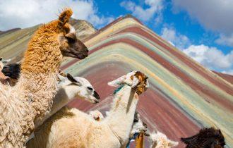 טיול לפרו ובוליביה - מסע אל האנדים והאינדיאנים