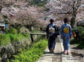 יפן - סדרת טיולי אצויו 2017