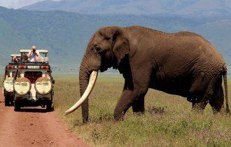 טיול לטנזניה בחופשת הפסח
