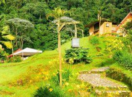 טיול לקולומביה בחגיגות קרנבל ברנקייה