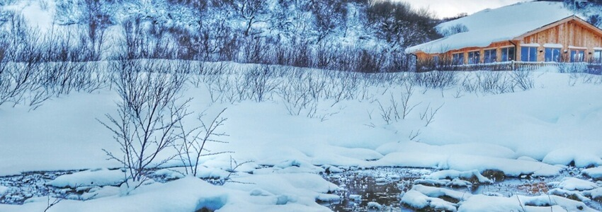 מה האיסלנדים עושים בחורף